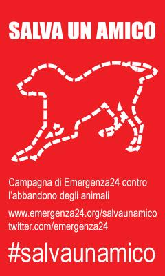 salvaunamico_240x400