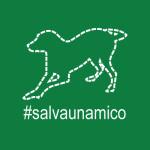salvaunamico_400x400_verde